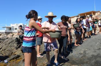 Veda de totoaba podría acabar pronto en el Golfo de California