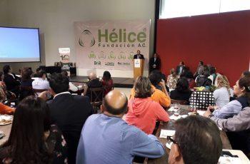 Cumple Hélice su primer década cuidando el medio ambiente